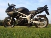 Suzuki_Sv650